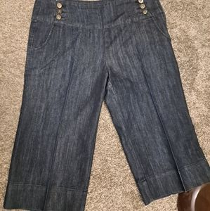 2 pair of jean shorts 1 pair is Dkny & 1 pair  is Baccini brand